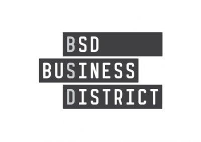 BSD Business District